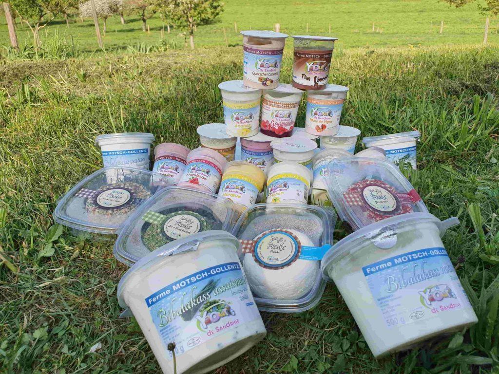 La collection de yaourts de Sandrine 68 Osenbach Alsace Produits laitiers, fromage, bibalakas, yaourts sandrine 68 Osenbach Alsace
