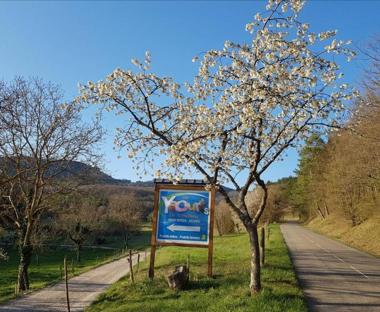 Entrée Les Yaourts de Sandrine 68 Osenbach Alsace